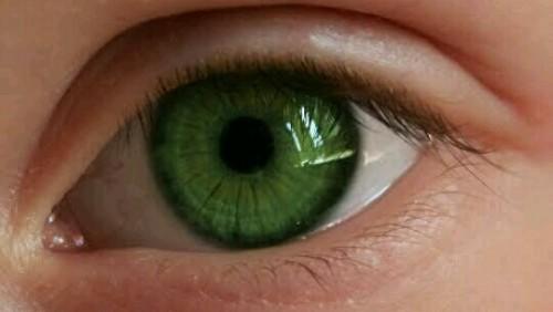 緑の目の夢