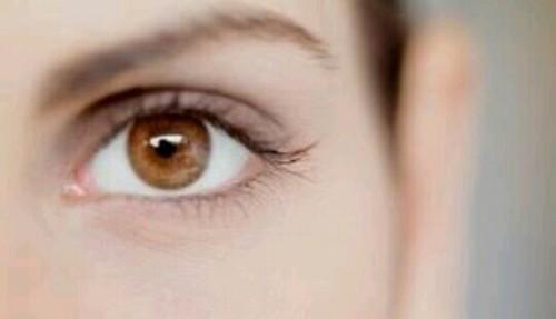 茶色の目の夢