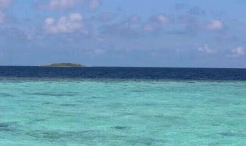 遠くの島の夢