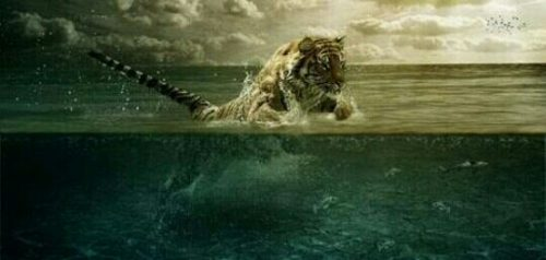 泳ぐ虎の夢