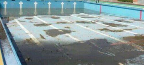 汚れたプールの夢