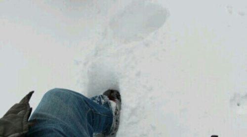 雪道を歩く夢