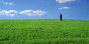 [夢占い]草の夢は成長のシンボル!裏シンボルは?