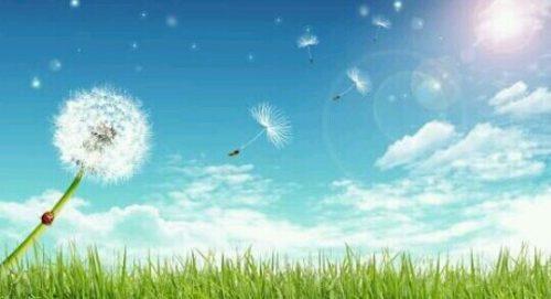 [夢占い]風の夢があらわすアナタの心理とは?