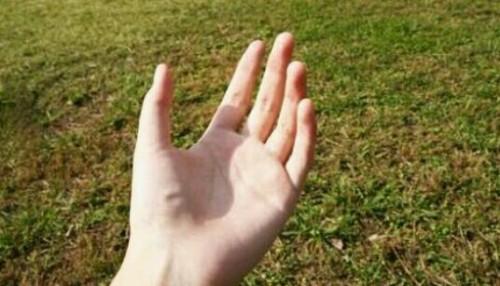 手を見つめる夢