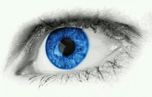 青い目の夢