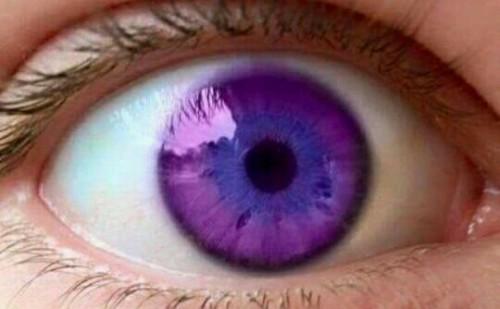 紫の目の夢占い