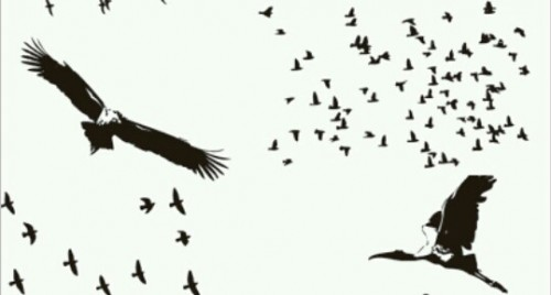 鳥の夢占い