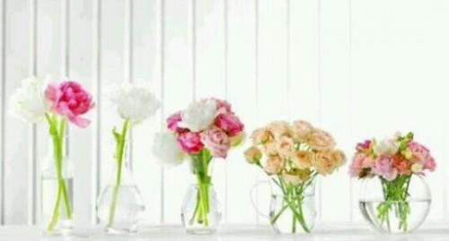 飾られた花の夢