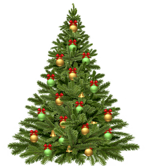 christmas-tree-1808558__340